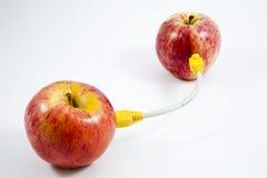 Les pommes se sont connectées par le câble Photo libre de droits