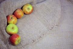 Les pommes sur le fond de la toile photos libres de droits