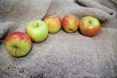 Les pommes sur le fond de la toile photo stock