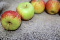 Les pommes sur le fond de la toile image libre de droits