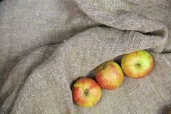 Les pommes sur le fond de la toile photos stock