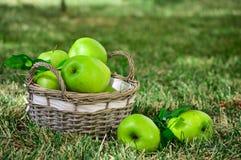 Les pommes vertes sont dans le panier Photographie stock