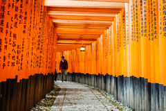 Les portes de Torii de Fushimi Inari Shrine à Kyoto, Japon images stock