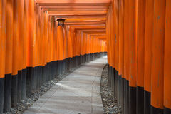 Les portes de Torii de Fushimi Inari Shrine à Kyoto, Japon Photos libres de droits