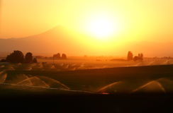 Les positionnements du soleil sur des terres cultivables Photographie stock libre de droits