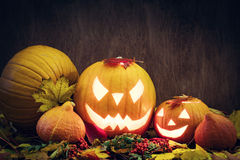 Les potirons de Halloween rougeoient, cric-o-lanterne découpée dans des feuilles de chute image stock