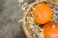 Les potirons oranges lumineux d'héritage dans le panier en osier sèchent Autumn Plants Bouquet sur Grey Stone foncé L'atmosphère  photo libre de droits