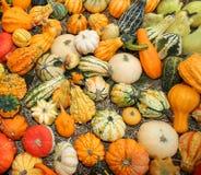 Les potirons pour la partie de Halloween à vendre au marchand de légumes font des emplettes Photo libre de droits