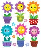 Les pots de fleurs avec les fleurs de sourire ont placé 1 Photos libres de droits
