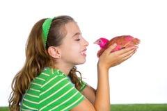 Les poules d'éleveur badinent l'agriculteur de propriétaire d'un ranch de fille avec des poussins de poulet Photo libre de droits