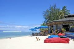 Les poulets marche sur l'île tropicale vide photos libres de droits