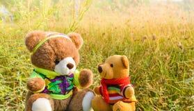 Les poupées mignonnes d'ours avec des fleurs engazonnent le fond et la belle lumière du soleil pendant les vacances de matin Photographie stock libre de droits