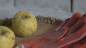 Les pousses masculines d'agriculteur après que gant de travail et le met sur une table en bois dans la grange, les pommes sur la  banque de vidéos