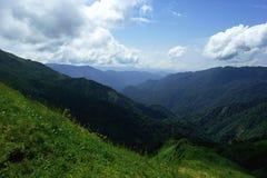 Les prés et les montagnes alpins dans le bleu de brume avec le bel été aménagent en parc Photo libre de droits