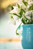 Les premières fleurs de source Photo libre de droits