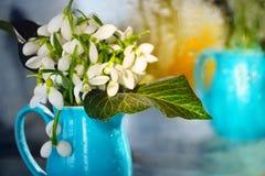 Les premières fleurs de source Image libre de droits