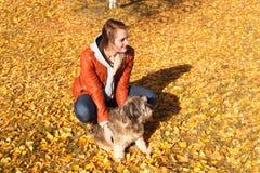 Les prises de fille avec des mains un chien Photos libres de droits