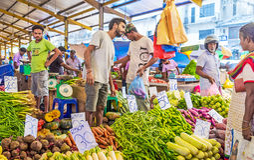 Les produits alimentaires frais à Colombo Photos libres de droits
