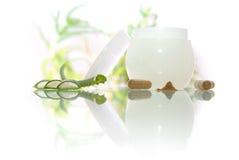 Les produits de beauté écrèment avec l'aloès vera Image stock