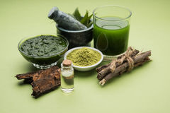 Les produits de neem d'Ayurvedic aiment la pâte, poudre, huile, jus, soin de dent images stock