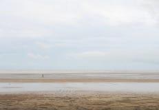 Les promenades de personne de solitude avalent le bord de la mer Photographie stock