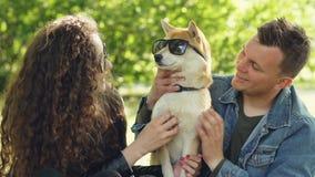 Les propriétaires de sourire de chien tapotent le chiot avec des lunettes de soleil sur ses yeux et sourient tout en détendant en banque de vidéos