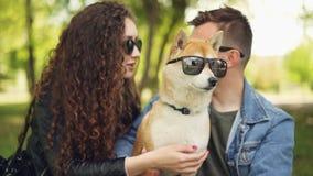 Les propriétaires fiers mettent des lunettes de soleil sur le chiot adorable d'inu de shiba, rient et causent la détente en parc  banque de vidéos