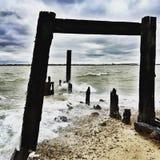 Les protections côtières, Languard, Felixstowe Photos stock