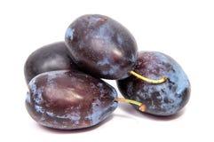 Les pruneaux de prune de prunes taillent la tranche les fruits qu'organiques portent des fruits sur un fond blanc Photo stock