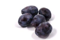 Les prunes délicieuses Photo stock