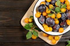Les prunes jaunes bleues fraîches en métal roulent sur la table en bois foncée image stock