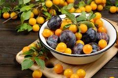 Les prunes jaunes bleues fraîches en métal roulent sur la table en bois foncée photos libres de droits