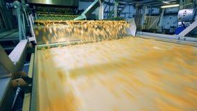 Les puces se déplacent le long des étapes du transporteur d'usine clips vidéos