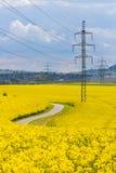Les pylônes à haute tension de l'électricité en colza oléagineux jaune mettent en place Photos stock