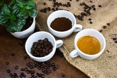 Les quatre phases de la vie de café photos libres de droits