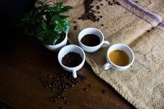 Les quatre phases de la vie de café photographie stock