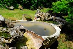 Les réservoirs avec de l'eau verdissent des collines de Berici dans la province de Vicence en Vénétie (Italie) Photos stock