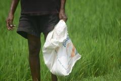 Les résidents ont subventionné l'utilisation d'engrais de BULOG Image libre de droits