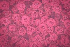 Les rétros roses roses fleurit le mur, fond modifié la tonalité foncé de vintage Photos stock