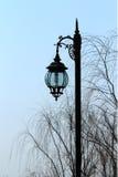 Les réverbères et les arbres en parc Photos libres de droits