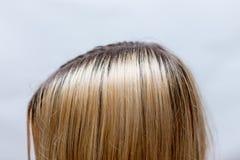 Les racines du poil foncées se développent encore après la mort de blonde photo stock