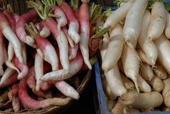 Les radis frais sont rouges et blancs dans deux tas en vente Images libres de droits