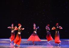 Les raisins de Turpan sont danse folklorique nationale de la Mûr-Chine Image libre de droits