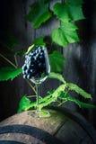 Les raisins et les vignes du vin sur le chêne barrel Photographie stock