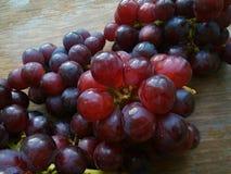 Les raisins rouges aiment la fleur Photo libre de droits