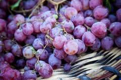 Les raisins se ferment vers le haut Image stock