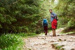 Les randonneurs marchant sur une forêt traînent dans la région sauvage Image libre de droits