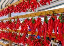 Les rangées des poivrons de piments s'accordent Photo libre de droits