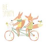 Les renards mignons de couples montent la bicyclette tandem Image libre de droits