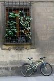 Les repos de bicyclette contre le bâtiment photographie stock libre de droits